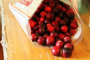 Cran Sauce Bag o Berries 300x200 Best. Cranberry Sauce. Ever. (And so easy!)