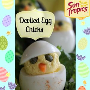 Deviled Egg Chicks resized4 1 300x300 Deviled Egg Chicks