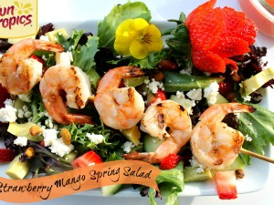 Strawberry Mango BBQ Shrimp Salad