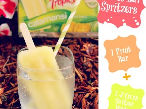 Frozen Fruit Bar Spritzer